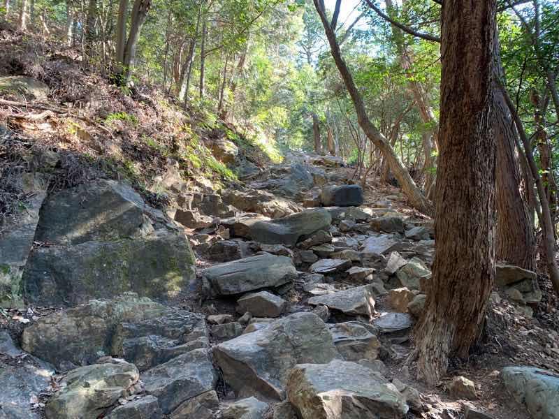 山頂へ向かう登山道の様子です。やや小さな石がたくさんあり足場が悪いです。