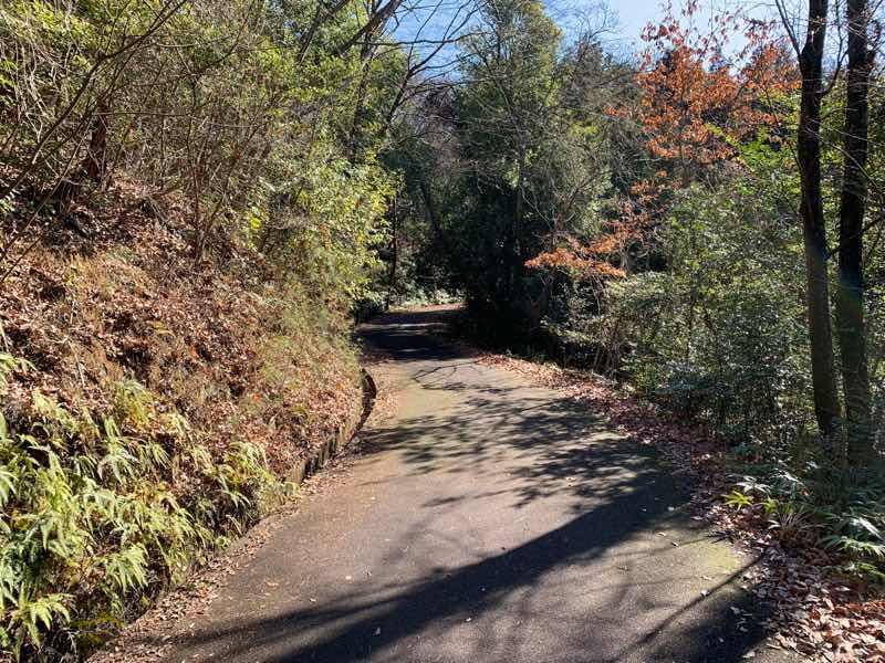 尾張富士の林道(富士線)の様子の写真です。くねくねした道になってきました。
