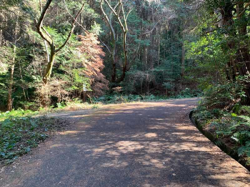 尾張富士の林道(富士線)分岐地点の写真です。右側が林道です。左側に登山道があります。
